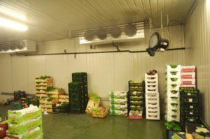 humidificateur rafraichisseur d'air pour entreprot et stock de fruits et légumes vapadisc 750