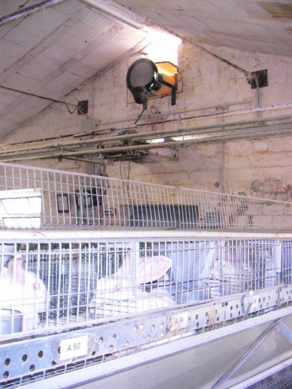 rafraichisseur d'air pour entrepot d'élevage vapadisc 750 teddington