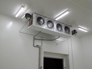 vapadisc 6600 pour humidifier une chambre froide de stock de fruits et légumes : humidification industrielle